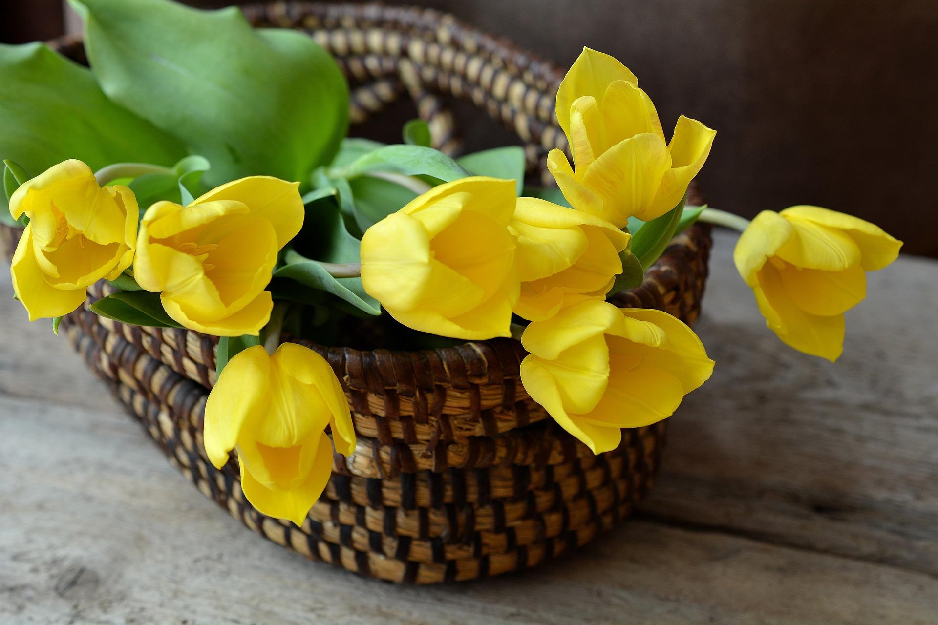 Podaruj bliskiej osobie niezwykły bukiet kwiatów